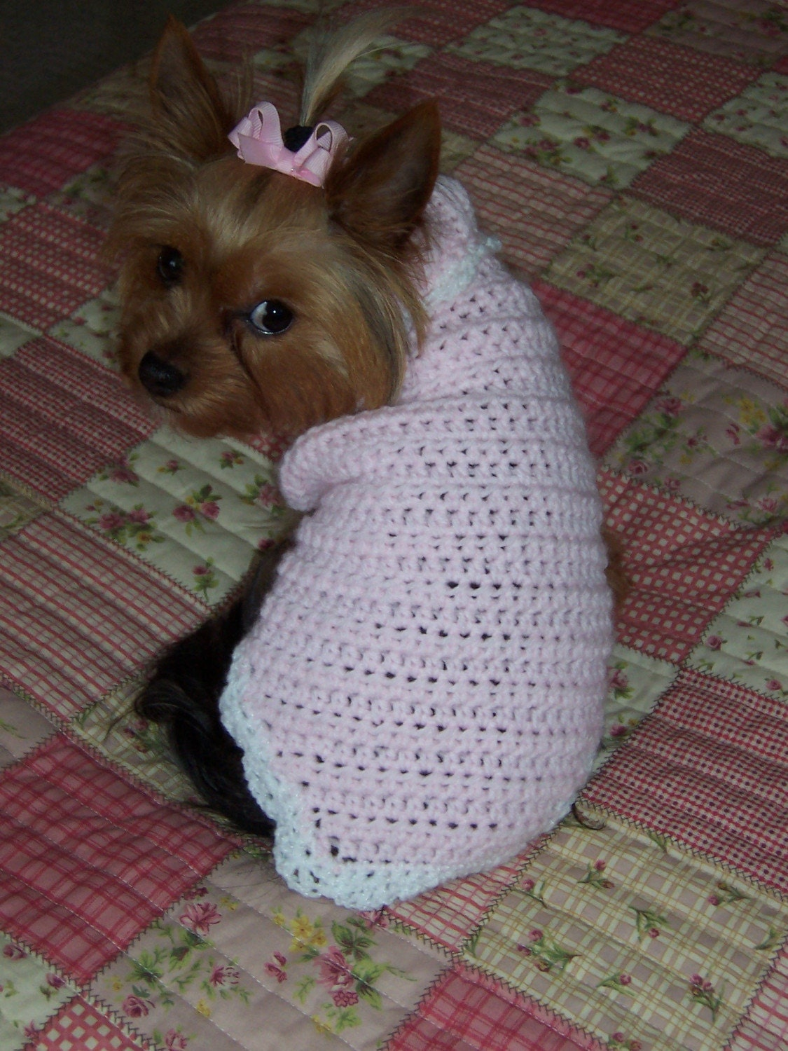 Free Crochet Pattern For Extra Small Dog Sweater ~ Dancox for .