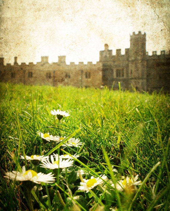 "Windsor Royal Castle ""Windsor Daisies"" near London in England, 8x10"" Photography Print, Landscape, Grass and Flowers, Palace Architecture"