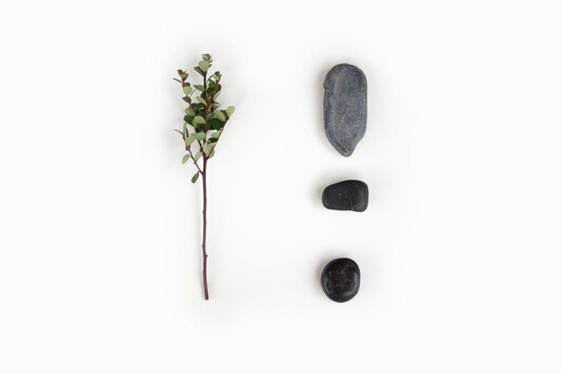 "Rocks and Leaves Photo, Minimalist Decor, Nature Still Life, Green, White, Gray, Black, Color 10x8"" Fine Art Wall Print - MySweetReveries"