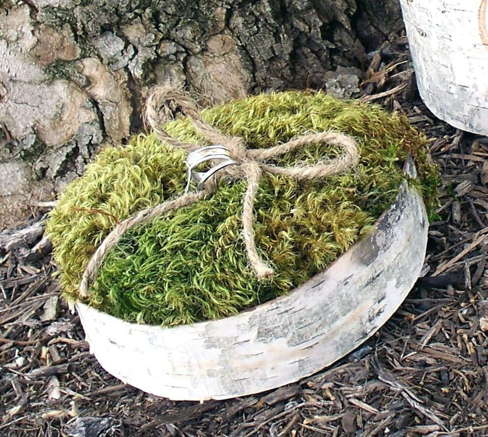 Rustic Birch Bark and Moss Wedding Ring Bearer Pillow