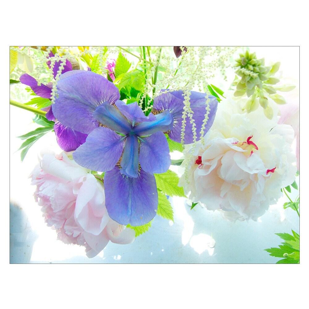 Siberian Iris, Fine Art Photograph of Iris Bouquet
