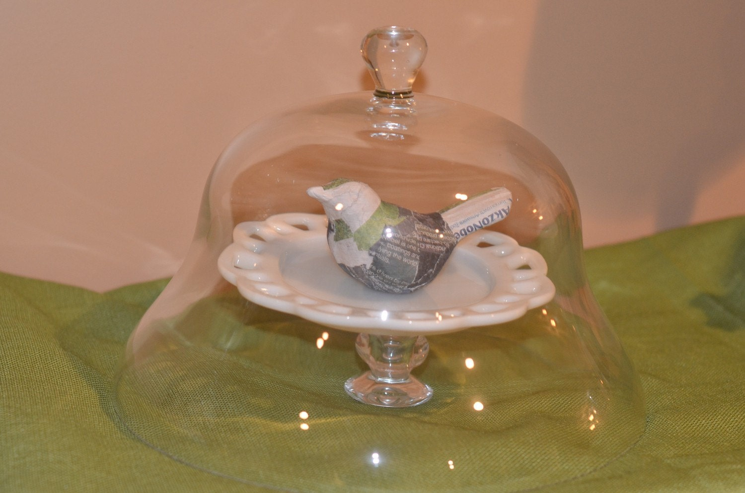 Large Glass Cloche