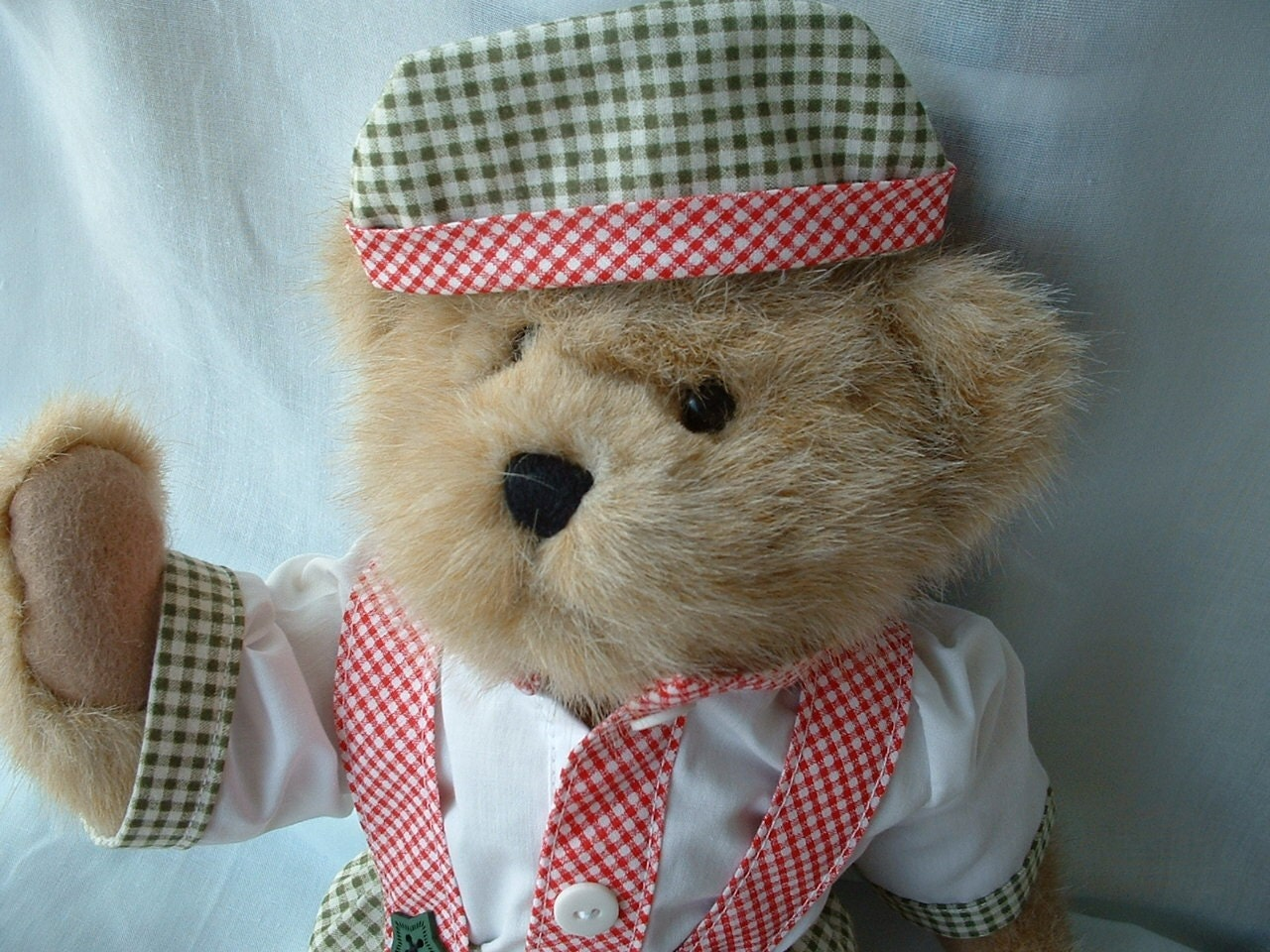 Country Bear All Dressed Up in his Handmade Clothes