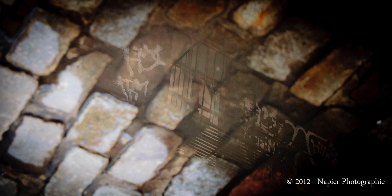 """Escape Reflection 12"""" x 24"""" - NapierPhotographie"""