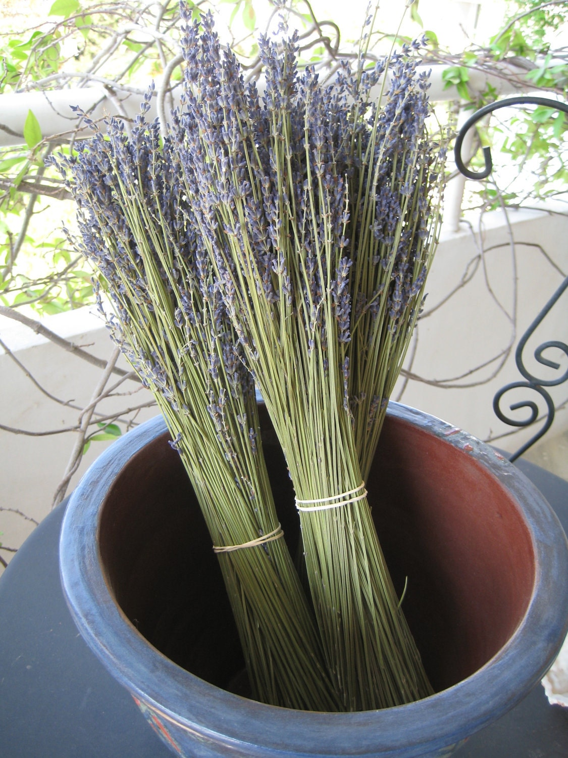 French Dried Lavender Bouquet, Bunch, Fragrant 100gr - TeliaNaturale