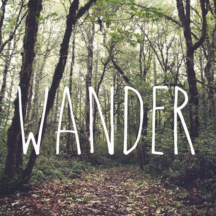 IN STOCK Wander, Autumn, Forest Path, Woodland Wall Art, Wanderlust Photo, Fall, Green, Golden, Fallen Leaves, Wanderlust 8x8 Photo Print - StudioClaire
