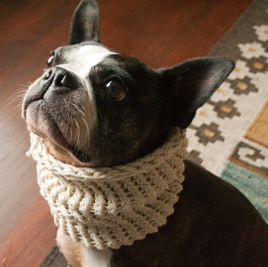 Amazing Greys Crochet: Greyhound Snood Crochet PatternNew!