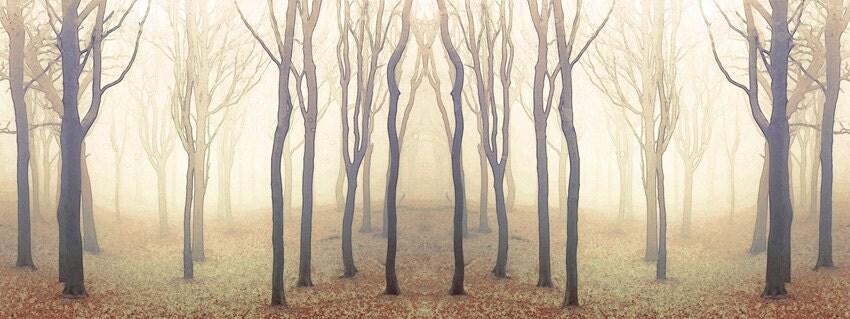 Tree photography, Woodland decor, Woodland Art Print, Enchanted Woodland, Fairy Tree / Golden Wood - MOONGARDENART