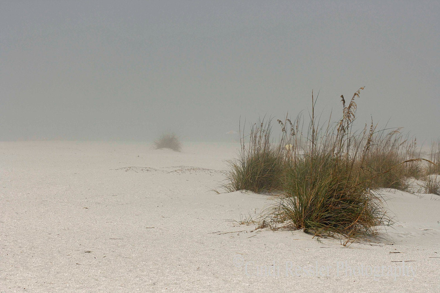 Fog Covered Beach, 5x7 Fine Art Photography, Beach Photography - CindiRessler