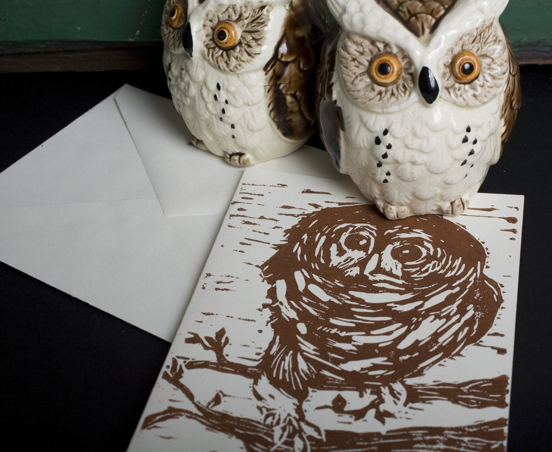 Barred Owl Note Cards