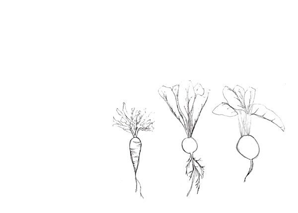 Line Art Limited : Minimalist garden art limited edition line by
