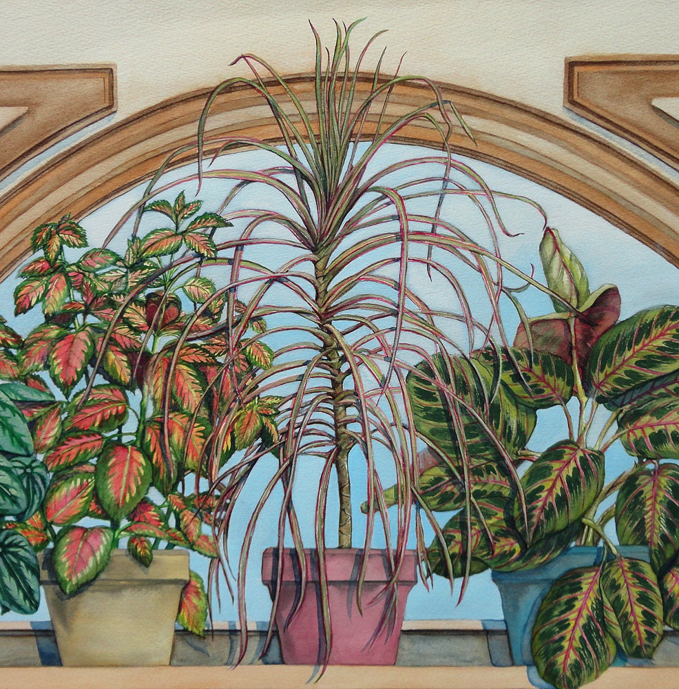 Original Watercolor Painting Houseplants