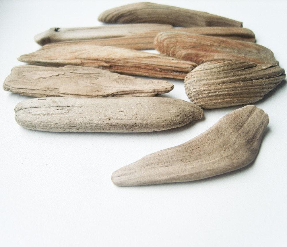 Natural Genuine Baltic Sea Driftwood - Light Gray Brown - M