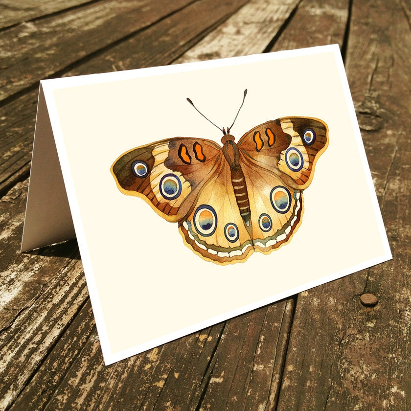"Set of 4 handmade cards - Butterfly Cards, Stationary - ""Butterfly"", nature, garden, watercolor cards - blackteacafe"