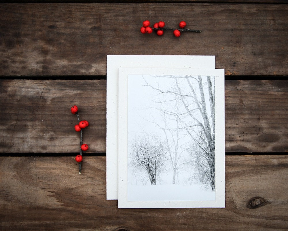 Snowy Woodlands Notecard Winter Photography Lacey Trees Snow Forest Trees White Gray, Blank Notecard - ShadetreePhotography