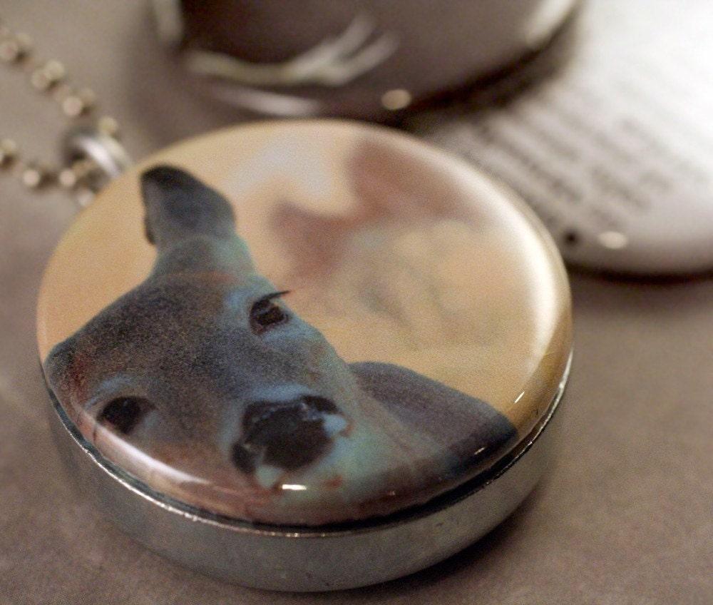 носимых искусства - добродетель медальон набор Дир-O и 14 - рога оленя печати круглый Сменные 3 в 1 медальон набор