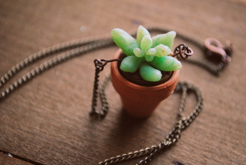 Planter Succulent Necklace