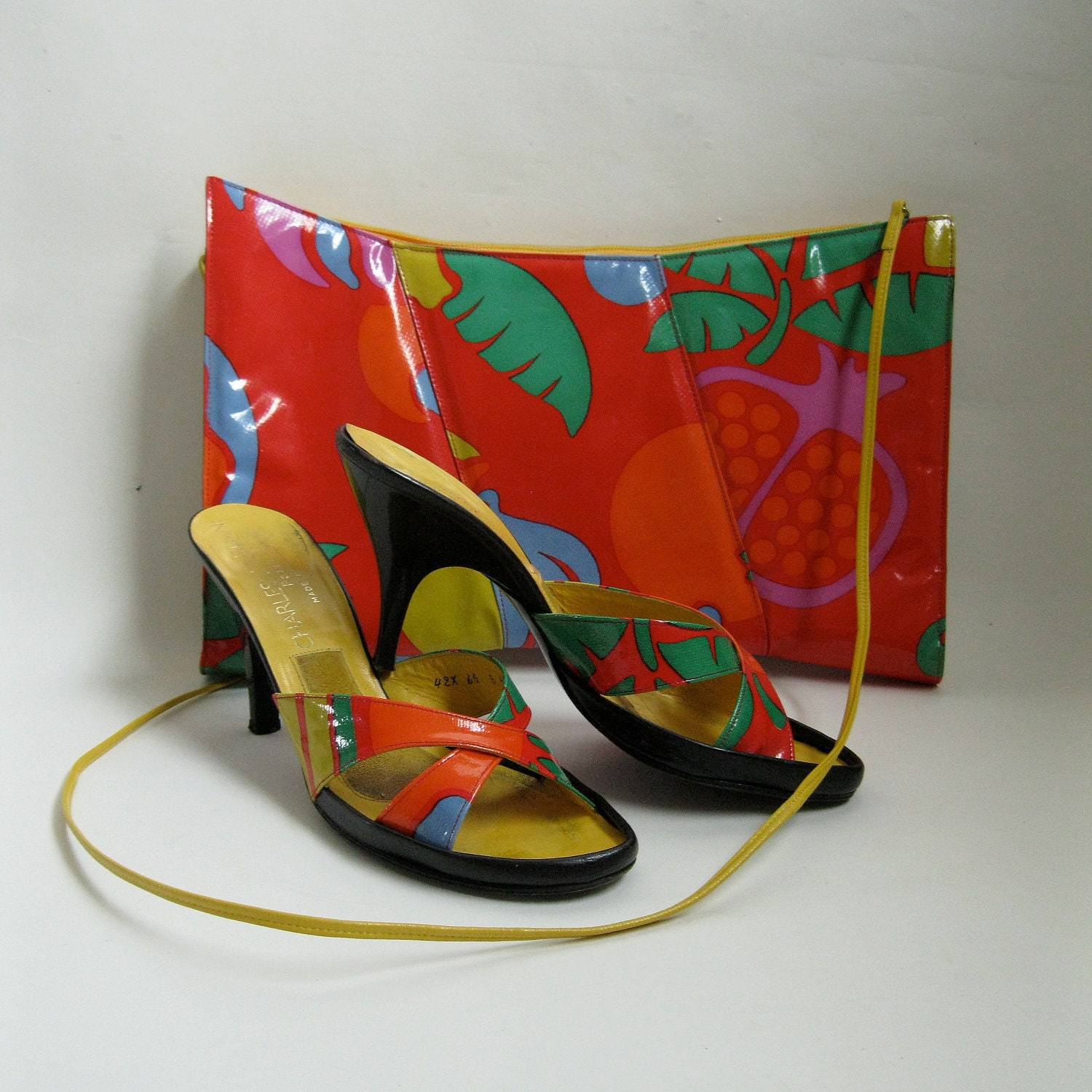 Charles Jourdan Shoes and Handbags