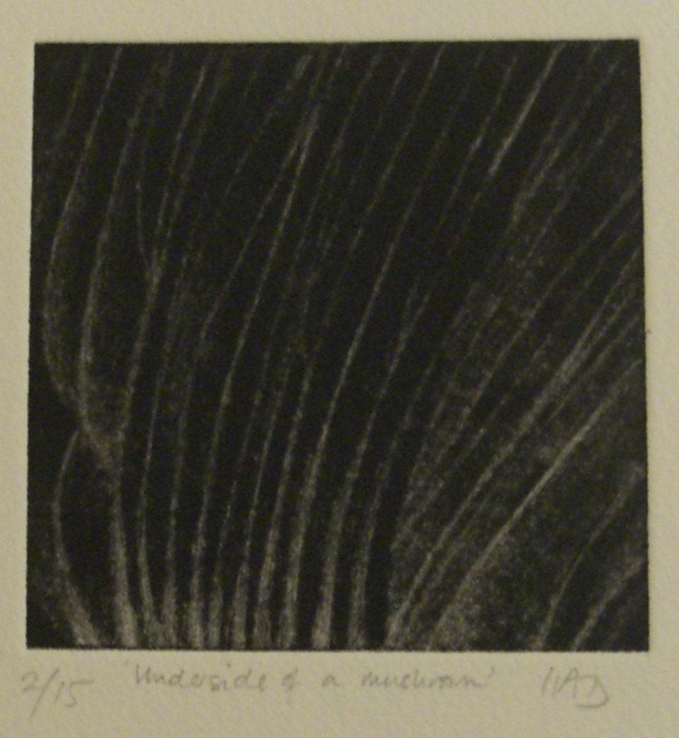 Underside of a Mushroom - Original Mezzotint LIMITED ED. OF 15
