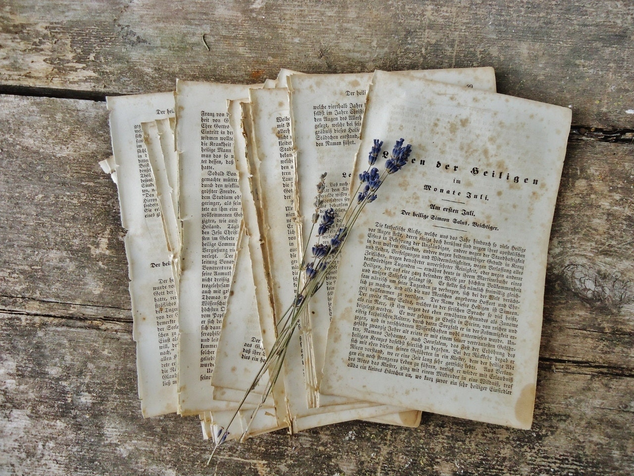 Antique German Book Pages for Home Decor, Scrapbooking, Altered Art, etc. - Set of 30 pages
