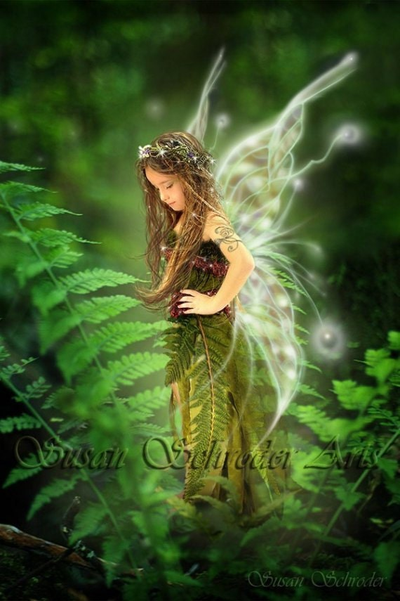 Resting in the Ferns  11x14 Fantasy Fairy  Art Print - SusanSchroderArts