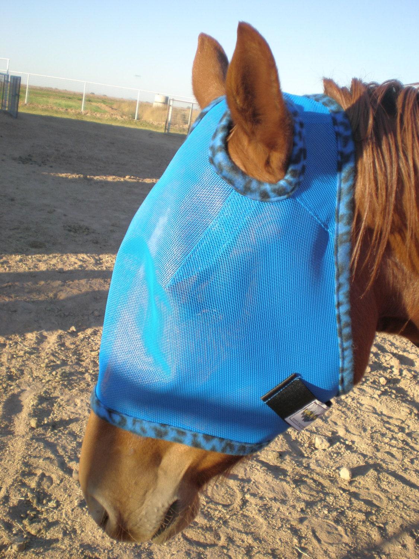 Custom Horse Fly Mask - Size Medium - Royal Blue Mesh with #170 trim - MMHAriginals