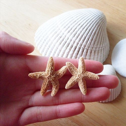 stoic starfish gracefullee made