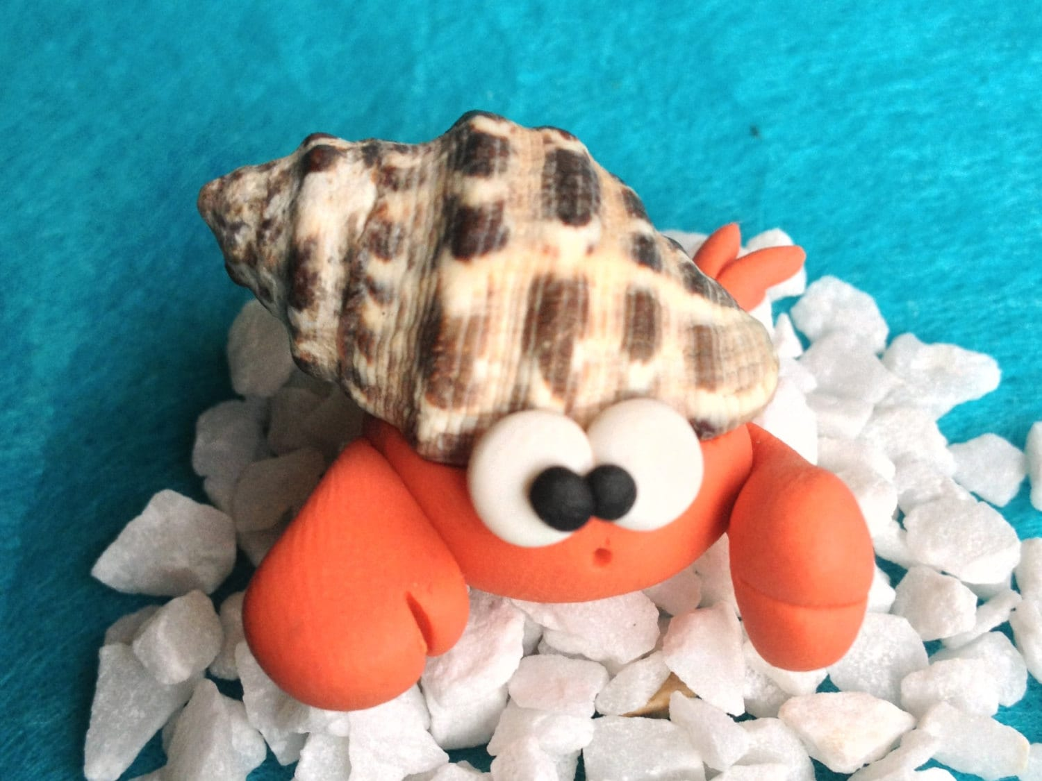 Hermit Crab - Paguro Bernardo (No 1) - A Little Polymer Clay Creation - bdbworld