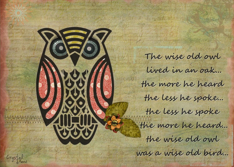 Original Art Print Wise Old Owl