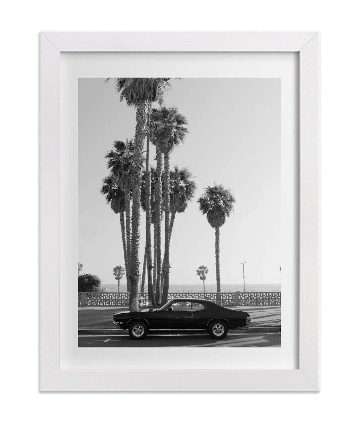And White Fine Art Print Large Wall Art Vintage Palm Trees Summer
