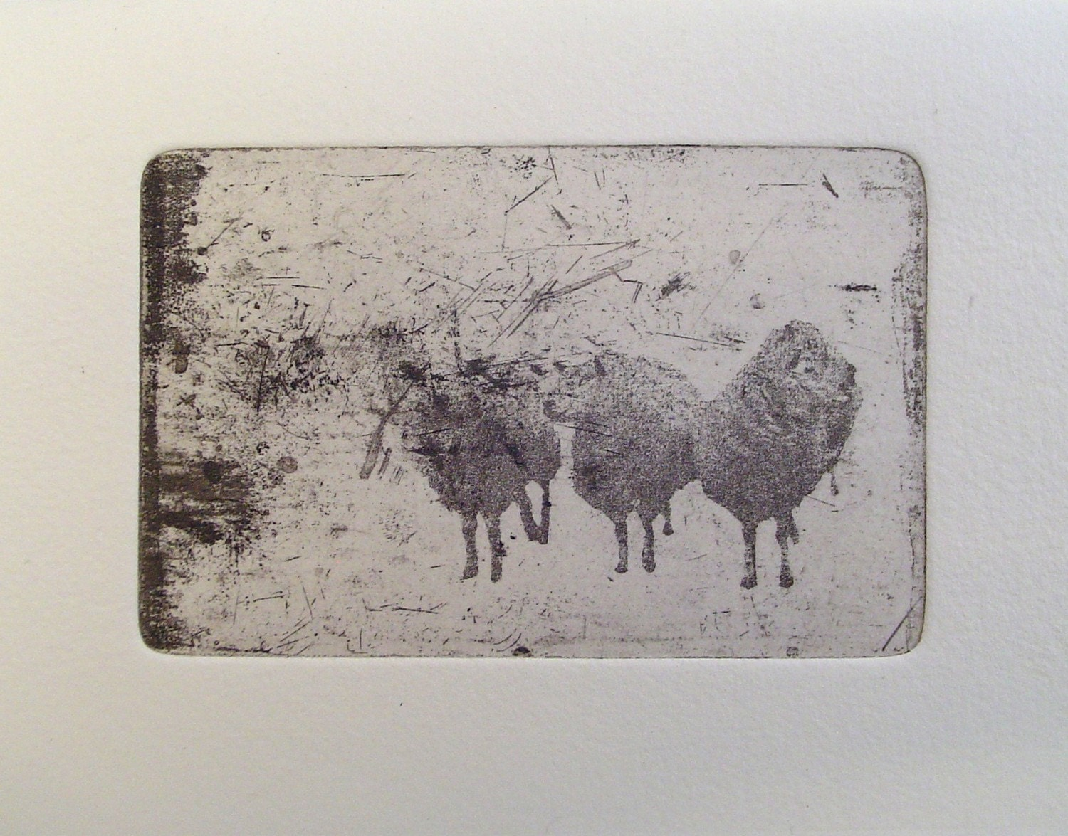 Small original sheep etching