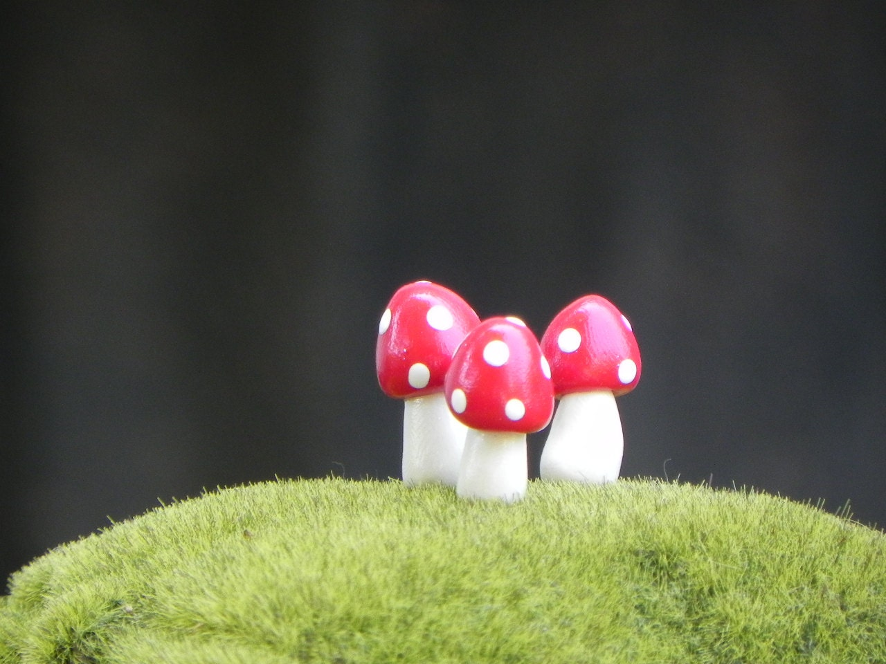 Fairy Garden Mushrooms miniature - red - TheLittleHedgerow