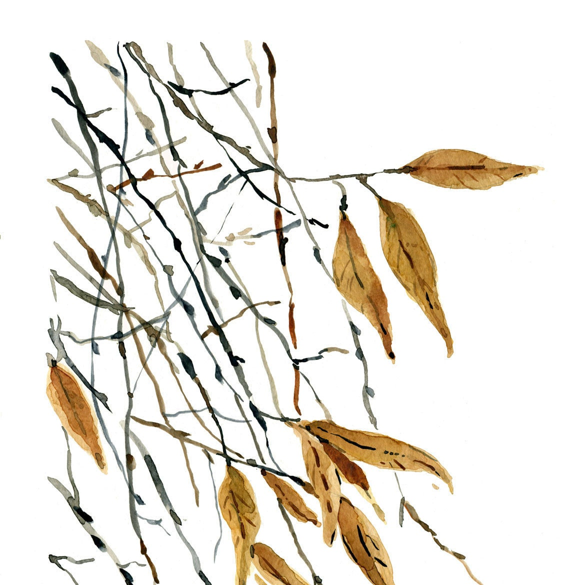 Falling Leaves Print of original Watercolor painting of dried leaves and branches, end of autumn, natural, zen - TheJoyofColor