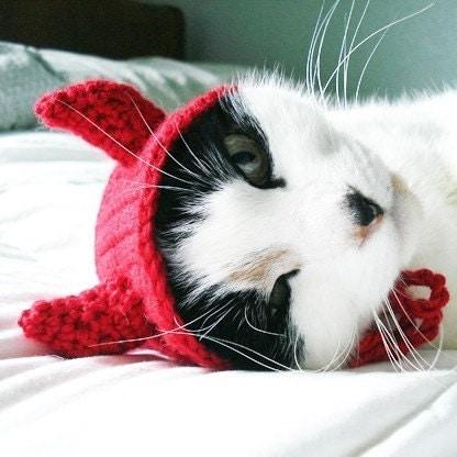 pet hat - devil