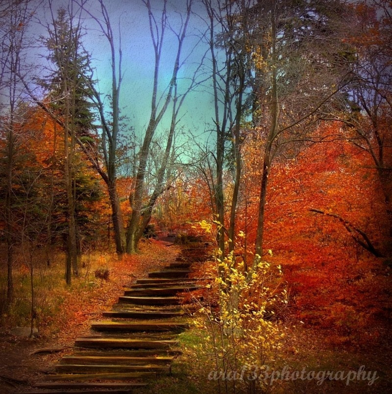 "Autumn Photography - 5x5 inch Photograph - ""Fall as I Remember It"" - ara133photography"