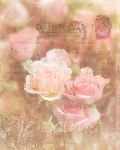 Love Letters - Signed Photograph - Photography, Wedding Flowers, Pink Roses, Shabby Chic Home Decor, Romantic Pastel Blossoms, French 8x10 - gildinglilies
