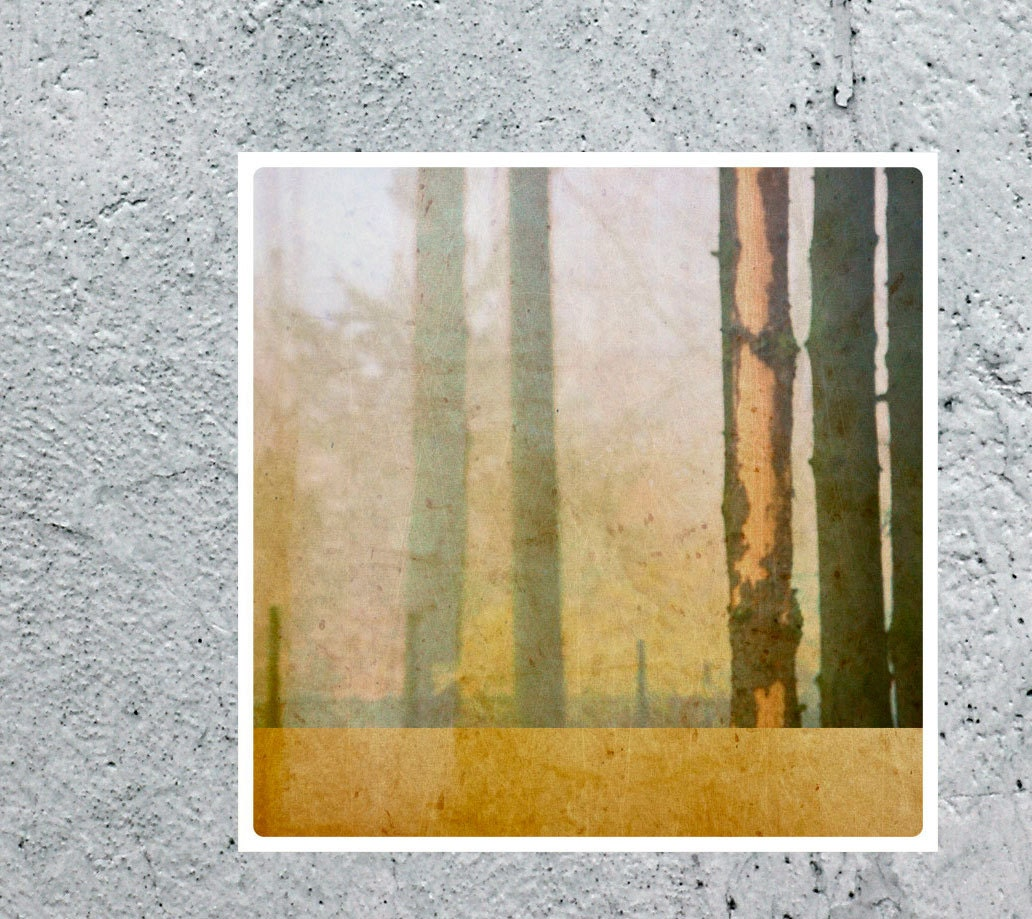 nature abstract LIMITED EDITTION fine art photography print, for modern home, nature decor zen square, geometrical trees, wood, yellow ocher - ANNandDAD