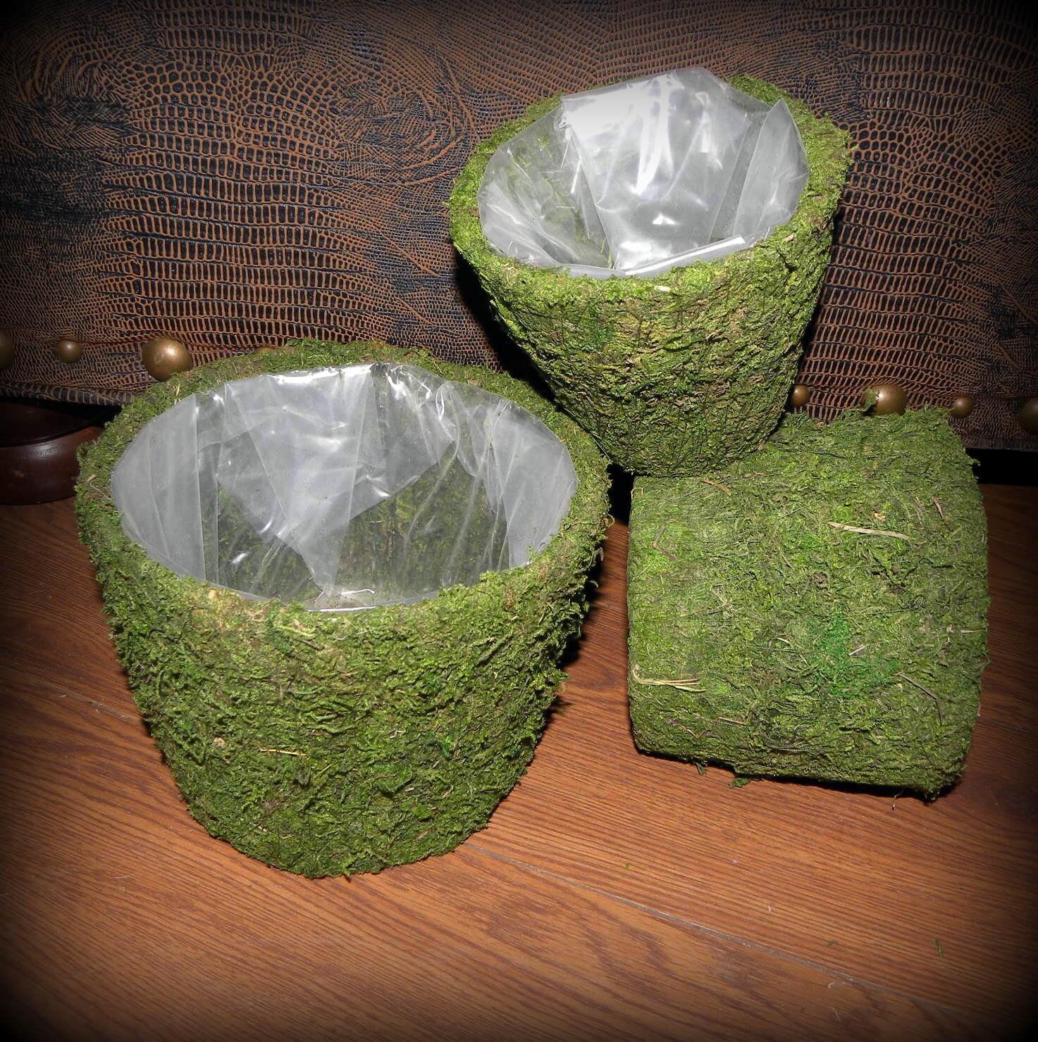Moss baskets Creekside Set of 3 Moss Basket planters-Wedding decor-Bonsai-Orchid Baskets-Soft green preserved moss