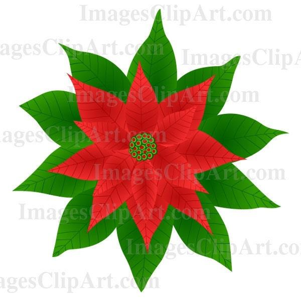 free clip art poinsettia border - photo #49