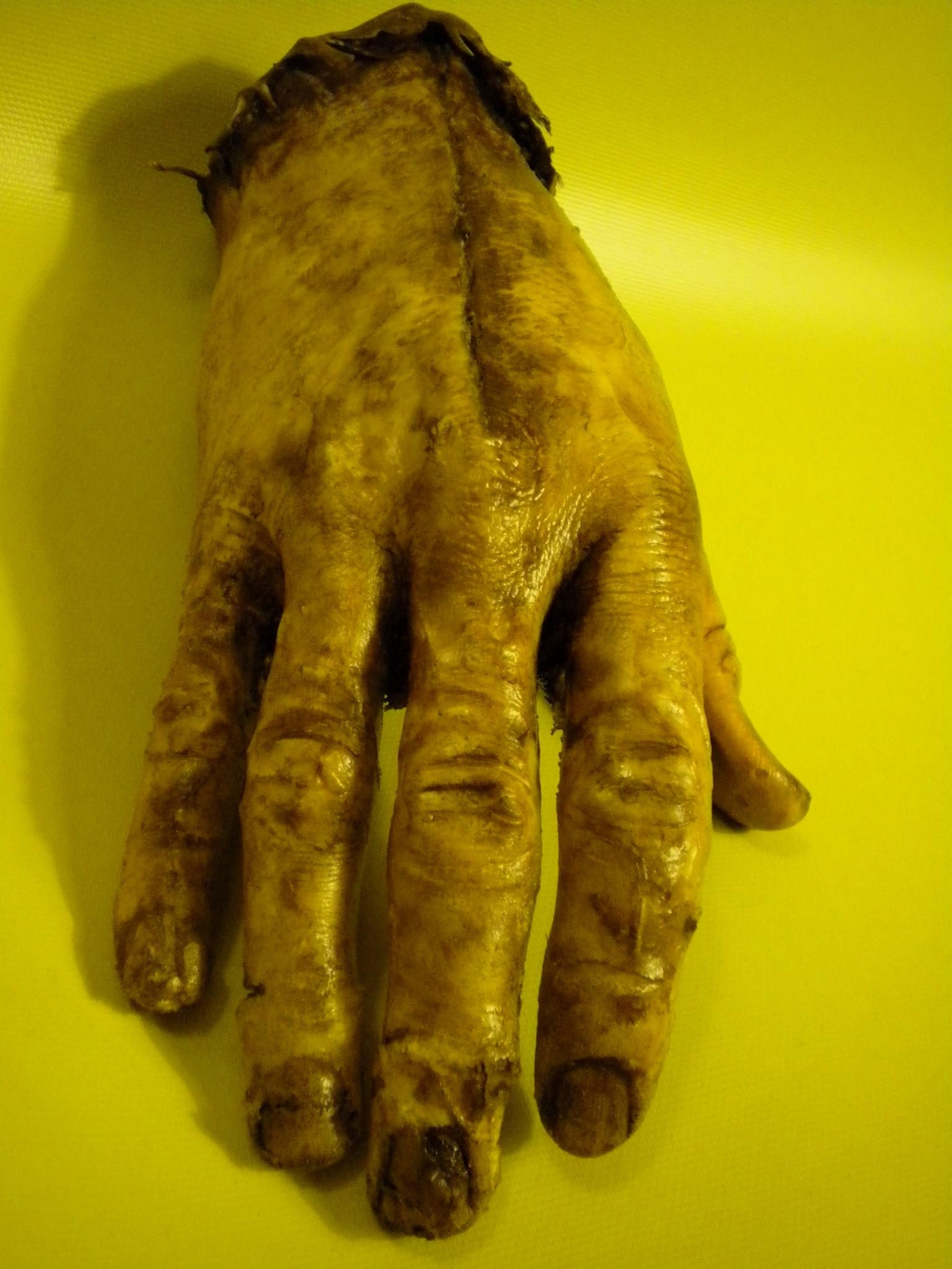 zombie hands left - photo #22