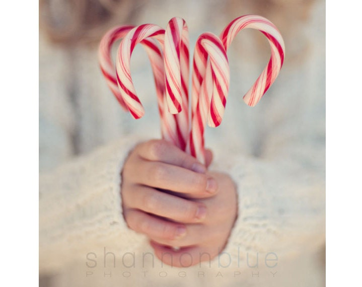candy cane christmas photography / holiday decor, hands, peppermint, stripes, child, winter, red, white / 8x8 fine art photo