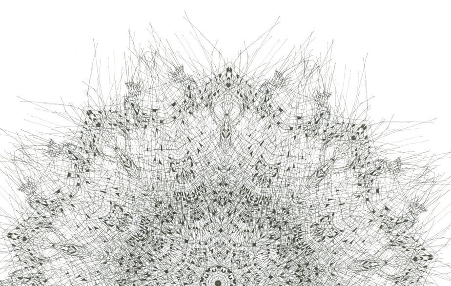 Forms found in nature- Fine art giclee print Archival Print  fine art print black and white mandala nature print abstract form