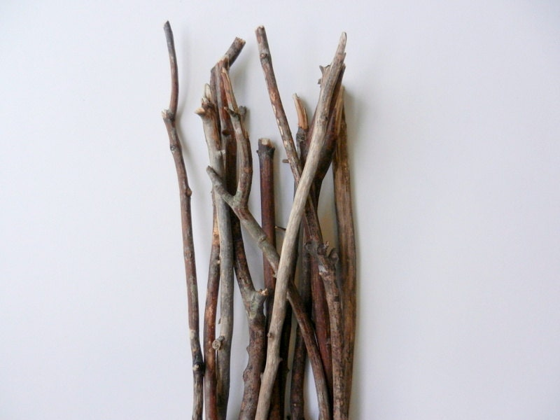 Bare Wood Branches 17 - 23 inches tall / natural rustic branches / vase filler / woodland home decor / land driftwood