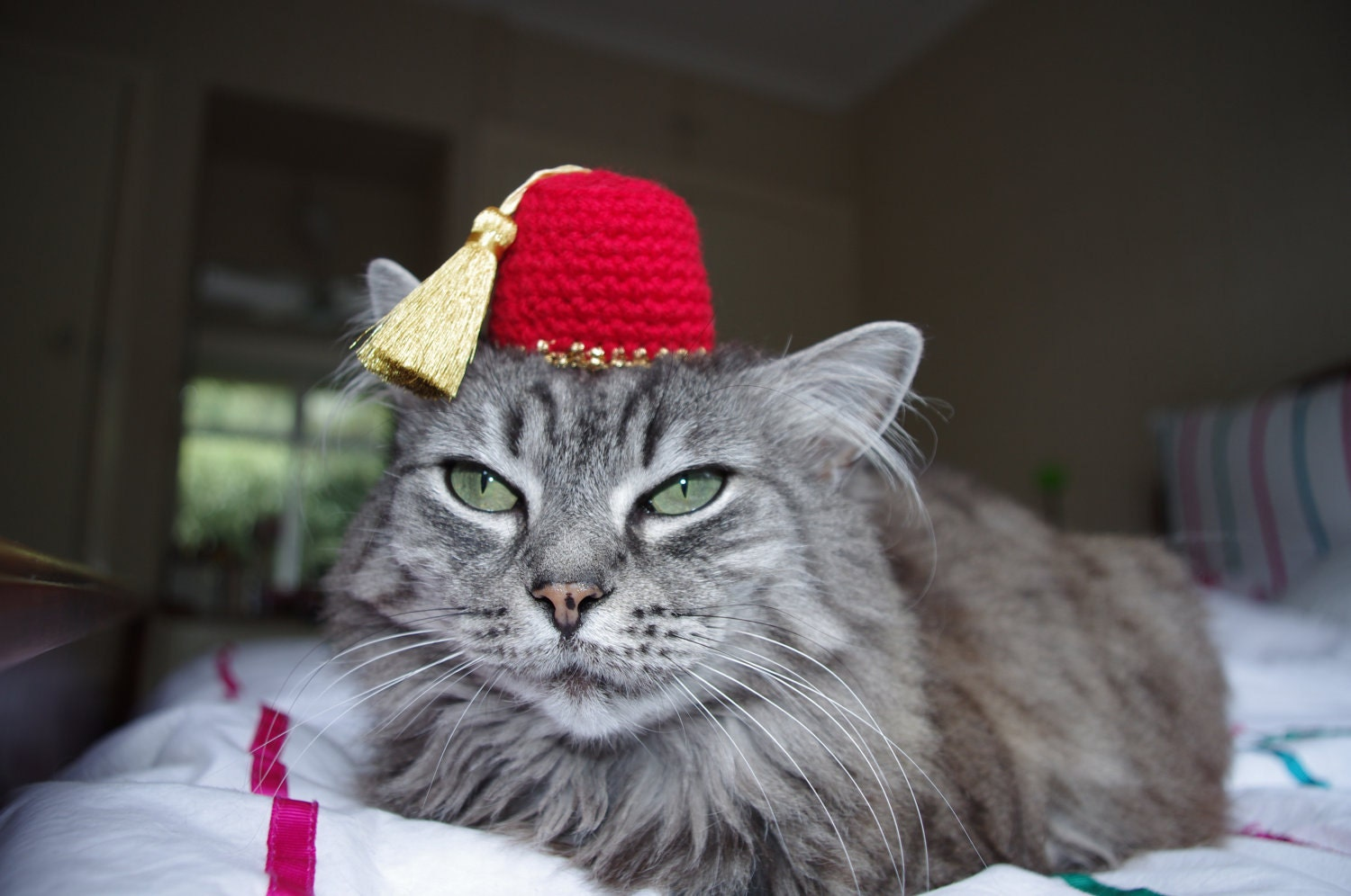 Fez Hat For A Cat by SarabiRose on Etsy Fezzes Are Cool Cat