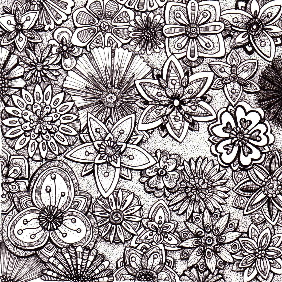 Abstract Line Drawing Flowers : Simple abstract flower drawings imgkid the