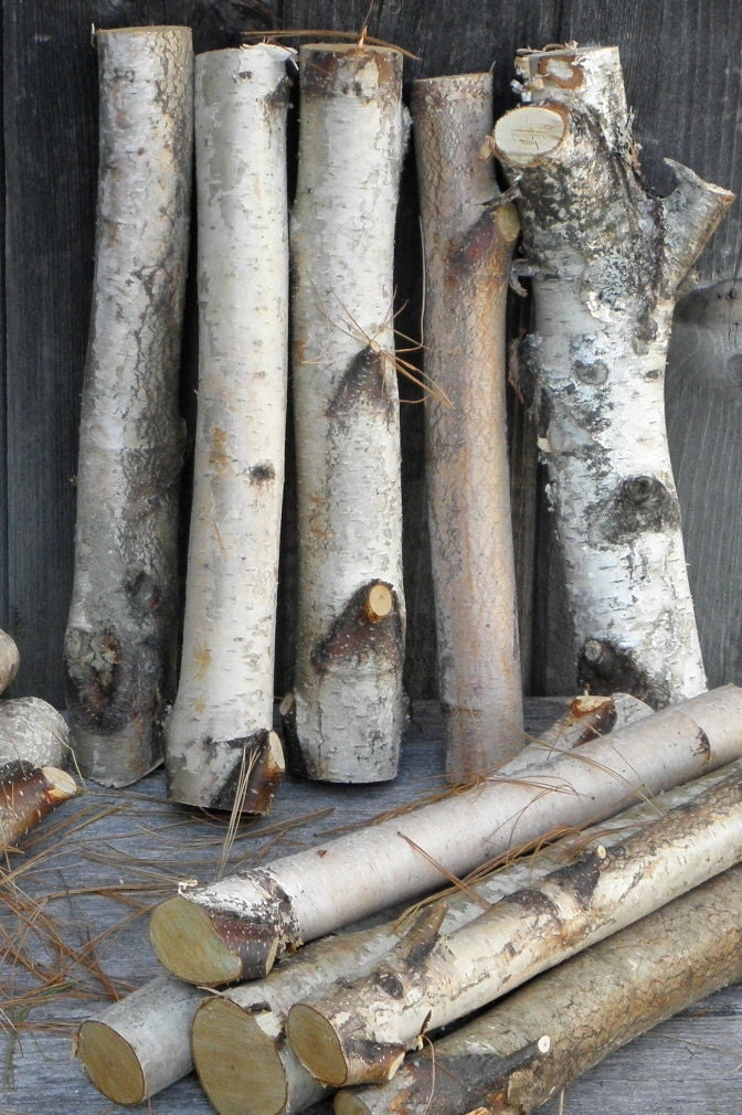 White birch logs 1 2 diameter decorative by therusticwoodshed for White birch log crafts