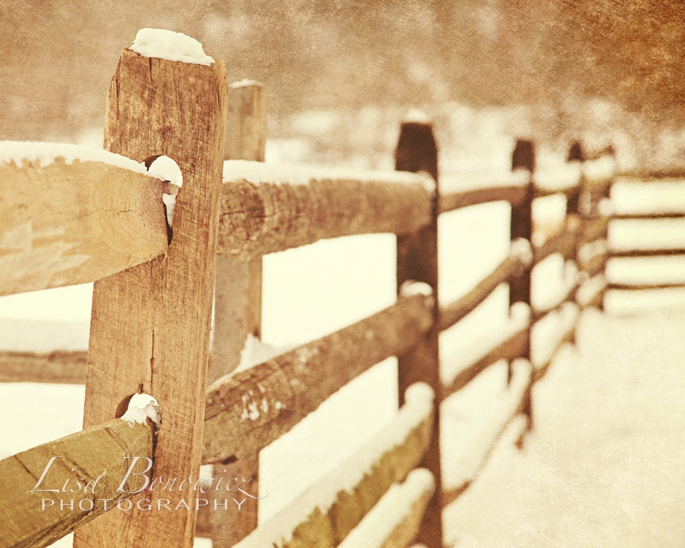 Snow Fence by LisaBonowiczPhotos