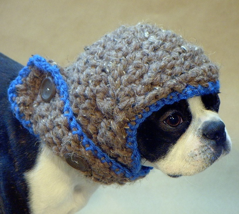 The Blue Baron Dog Hat
