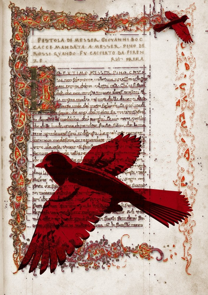 RED DREAM - Poster print collage from an old page manuscript book with so lovely red birds - size 8,268 X 11,693 inches