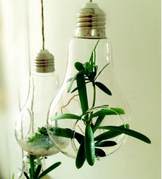 Light Bulb Glass Hanging Planter Container Vase Pot Home Wedding ...